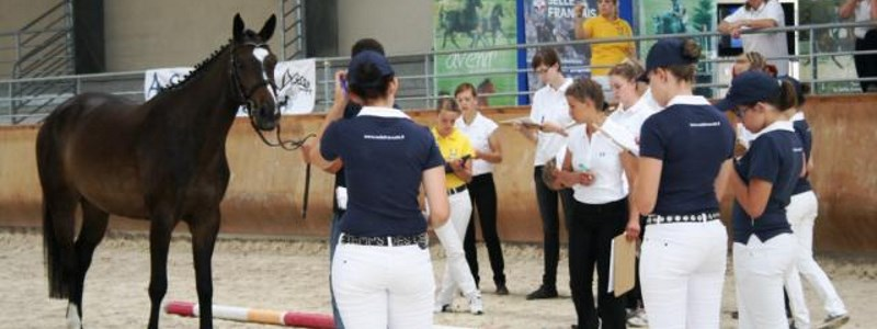 Association Top Dressage Team Satolas-et-Bonce