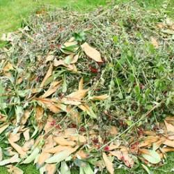 Déchèterie déchets de jardin Satolas-et-Bonce