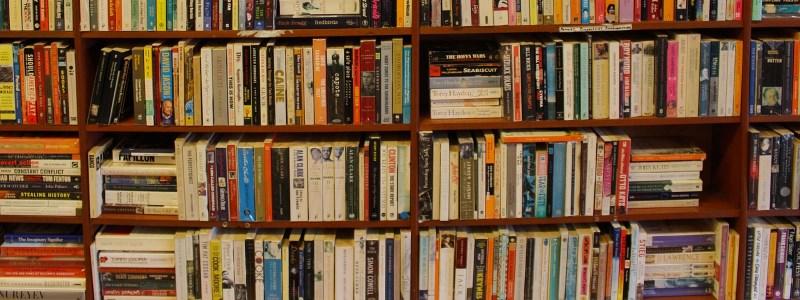 Livres médiathèque Satolas-et-Bonce