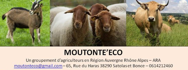 Association Moutonte'Eco Satolas-et-bonce