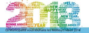 Voeux 2018 mairie Satolas-et-Bonce