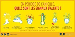 symptomes-canicule