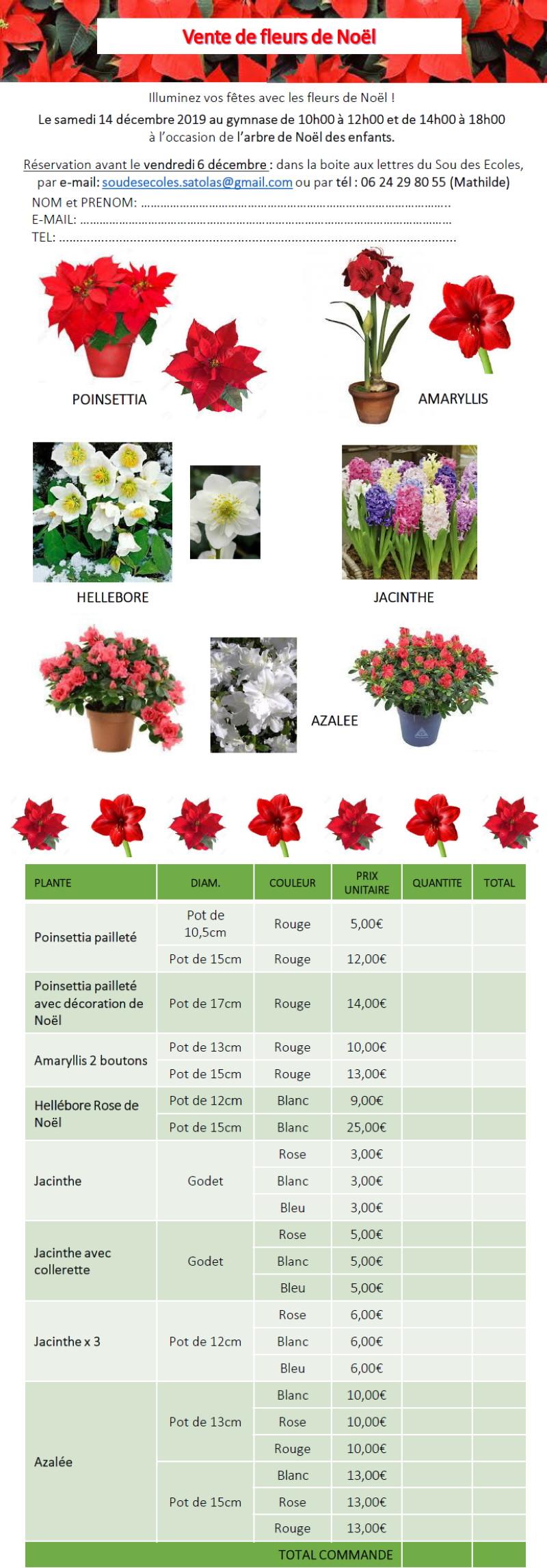 vente-fleurs-noel-2019