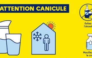 canicule2020-web