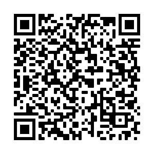 QR CODE questionnaire Parc des Lurons